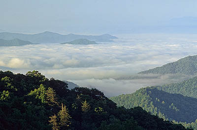 NC: Swain County, Great Smoky Mountains Nat. Park, Newfound Gap Road, Thomas Ridge, View from Thomas Ridge Overlook Morning fog in valleys [Ask for #216.220.]