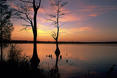 Dusk view over lake. Location: NC, Bladen County, Elizabethtown Area, Jones Lake State Park. [ref. to #233.318]