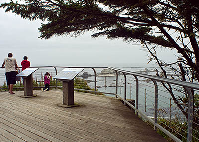 OR: South Coast Region, Coos County, Coos Bay Area, Cape Arago Area, Cape Arago State Park, Overlook [Ask for #271.155.]