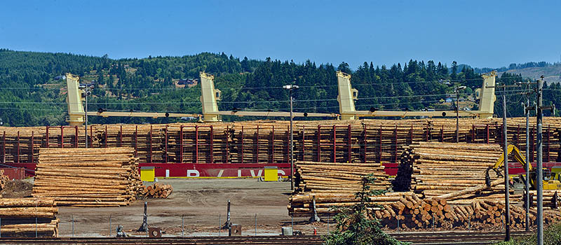 OR: South Coast Region, Coos County, Coos Bay Area, City of North Bend, Waterfront, Logs are loaded onto an ocean-going ship; panoramic view. [Ask for #271.159.]