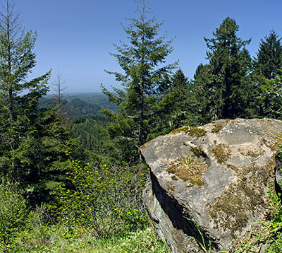 OR: South Coast Region, Coos County, Coast Range, Elliott State Forest, The Ridgetop Drive, FR 2000, Good gravel road gives access to this actively logged state forest; view east from Trail Butte towards the Pacific Ocean and Oregon Dunes Nat Rec Area [Ask for #274.154.]