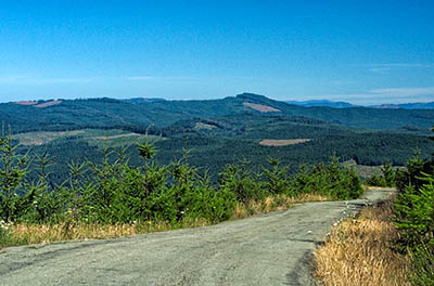 OR: Coos County, Coast Range, Coquille River Mountains, Signal Mountain Road, Wide views from the road as it climbs the western slope of Signal Mountain (aka Kenyon Mountain) above Camas Valley in a clearcut [Ask for #274.567.]