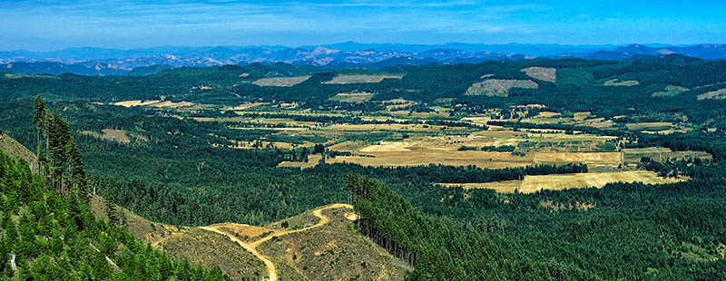 OR: South Coast Region, Coos County, Coast Range, Coquille River Mountains, Weaver Road Area [BLM], Signal Mountain Road, View over Camas Valley from a cliff top just off the road. [Ask for #274.574.]