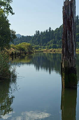 Blog Pacifica - Back Roads of the Upper Coos River