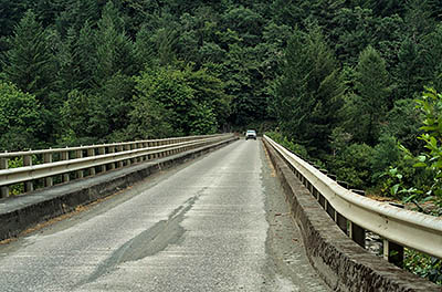 OR: South Coast Region, Douglas County, Coast Range, Reedsport Area, Camp Creek Area (BLM), Tyee Area, The Umpqua River at the one-lane BLM bridge [Ask for #274.644.]