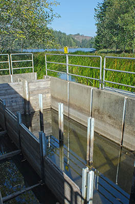 OR: South Coast Region, Coos County, Northern Coastal Area, Lakeside Community, Eel Lake, William M Tugman State Park, This fish trap on the lake's outflow is used for steelhead trout conservation and breeding, and doubles as a fish ladder. [Ask for #274.A12.]