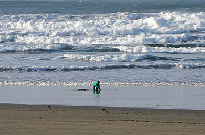 A child plays in the surf at Bastendorff Park, the southern terminus of the Oregon Dunes.