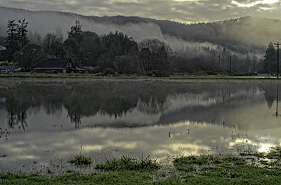 OR: South Coast Region, Coos County, Coast Range, Old Coos Bay Wagon Road, Sumner Community, The community of Sumner, with early morning fog, reflects into the winter flood waters of Catching Slough. [Ask for #276.240.]