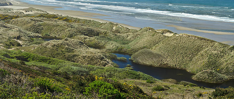 Natural lakes form between the dunes, as viewed from the cliffs that rise above the Oregon Dunes' northern end. [Ask for 276.486]