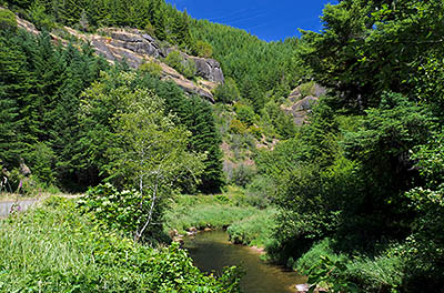 OR: South Coast Region, Douglas County, Coast Range, Reedsport Area, Camp Creek Area (BLM), Camp Creek Canyon, Camp Creek Road (BLM) follows Camp Creek along its cliff-lined gorge [Ask for #276.974.]