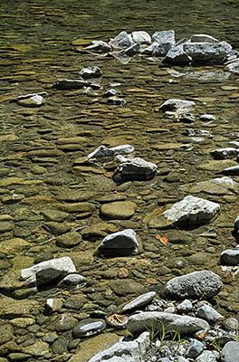 OR: Curry County, Coast Range, Elk River, Elk River. River rocks extend into the river at a gravel bar [Ask for #277.027.]